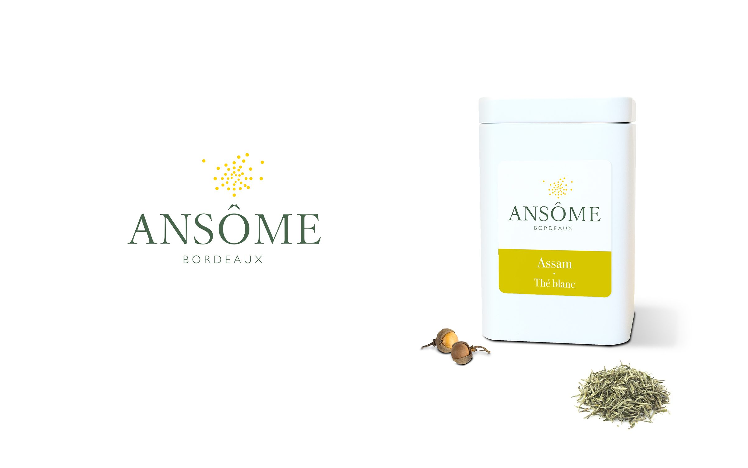 Ansome01